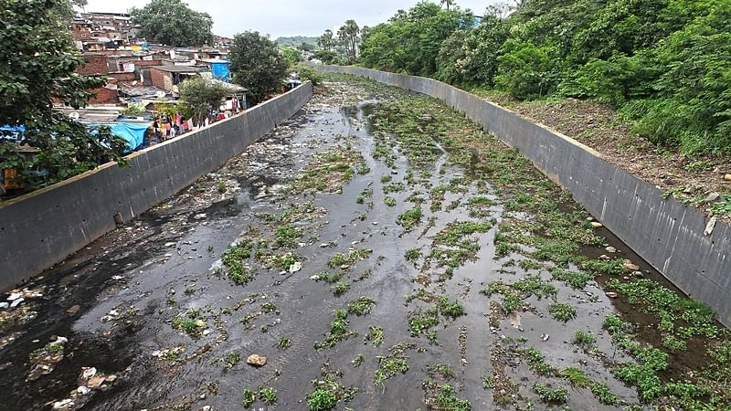 Mumbai: Mithi river will soon have a cycling bridge