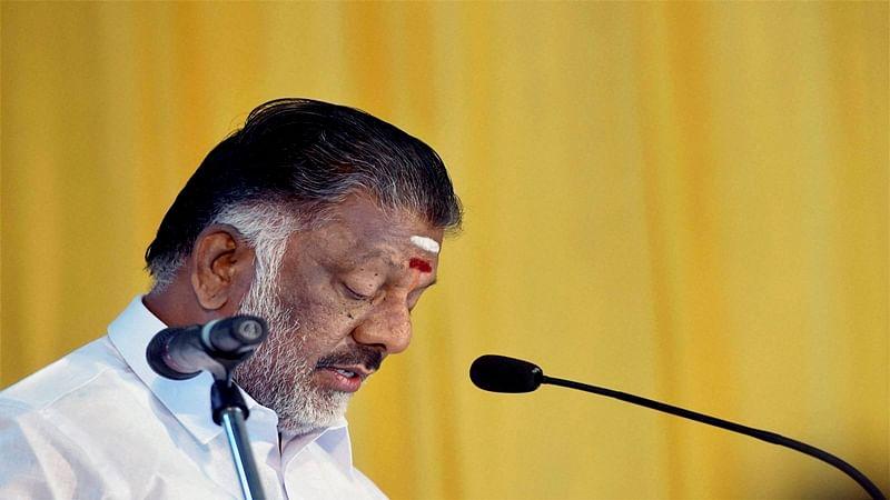Panneerselvam urges PM Modi to issue ordinance to conduct Jallikattu