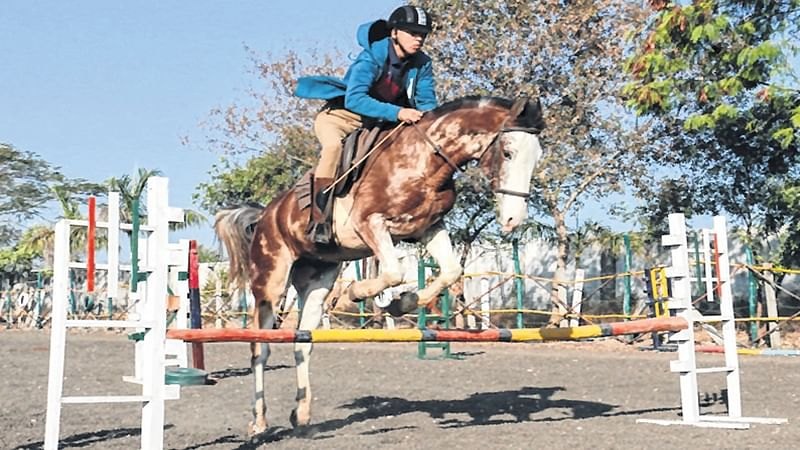 Human's galloping friend helps thwart health scare