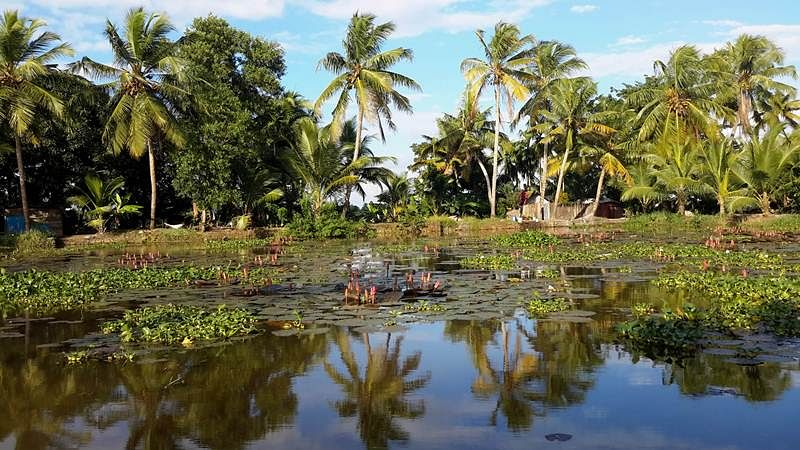 Explore the beauty of Kerala