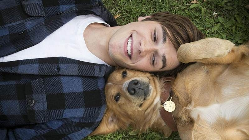 Why diabetics should own a dog