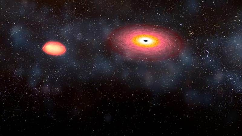 Black holes' winds giving life to stars