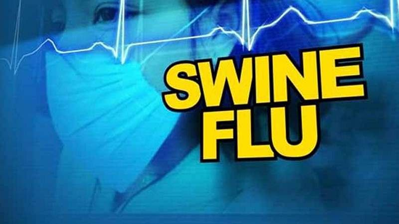 Bombay High Court slams government for not constructing lab to test swine flu in Aurangabad