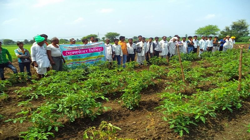 Ujjain: Lack of policy to maintain demand and supply leads to farmers' unrest