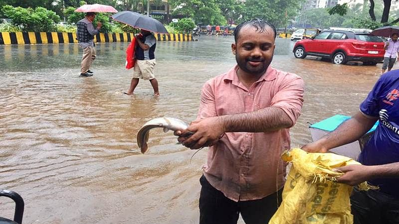 Oh Fish! Mumbai man's big catch from flooded waters will leave you bewildered