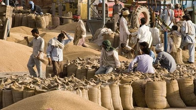 Centre hikes wheat MSP by Rs 50 to Rs 1,975 per quintal