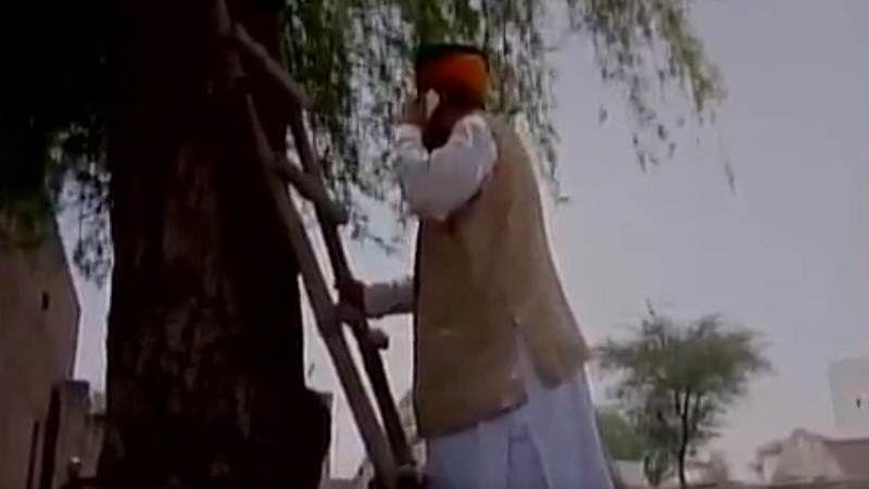 Watch video: Arjun Ram Meghwal climbs on tree to make a phone call
