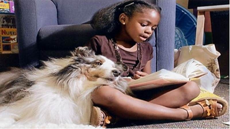 Reading to dogs may motivate kids to pick more books: study