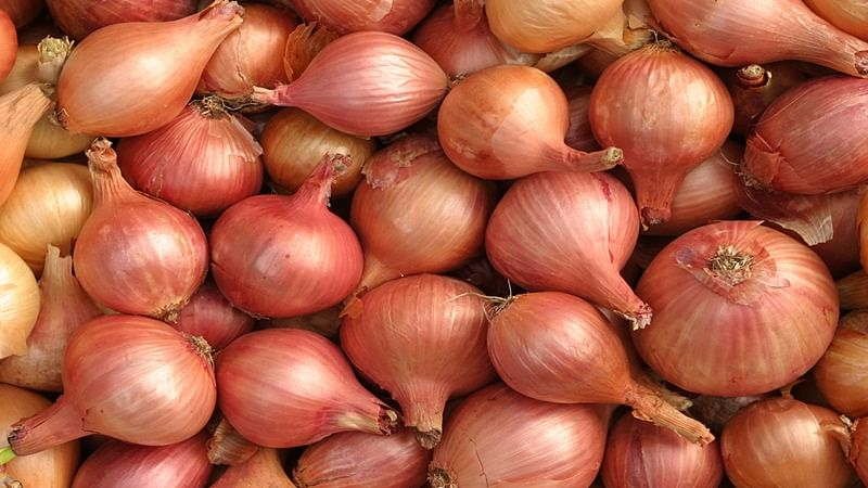 Indore: Onions procured by govt being sold in markets