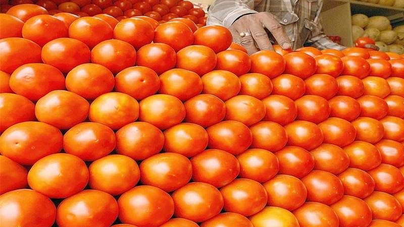 Mumbai: Man arrested for stealing tomatoes worth Rs 57,000