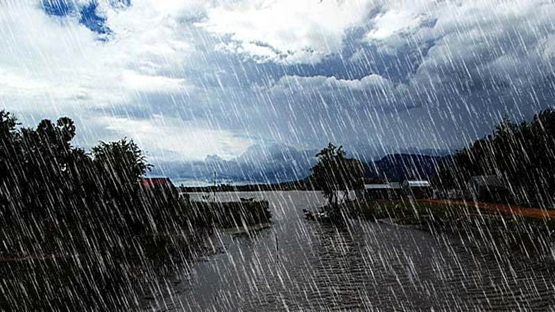 Rains lash many places in Punjab, Haryana; farmers worried