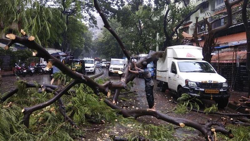 Thane: 2 killed, 9 hurt as tree falls on them amid heavy rain