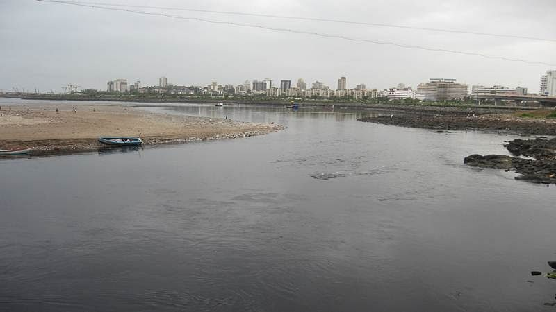 Mumbai: BMC to erect wall to prevent contamination of Thane Creek
