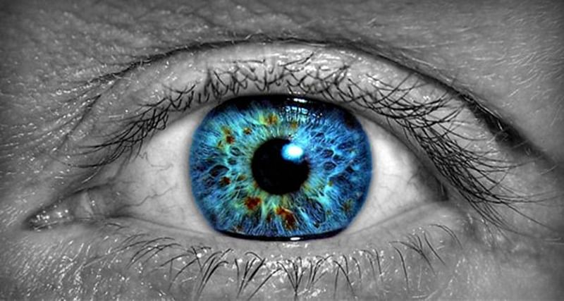 Retinal disease: A leading cause of chronic blindness