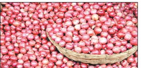 Rising onion prices bring tears to eyes