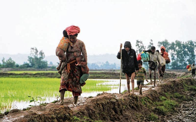 India reassures Bangladesh of diplomatic, humanitarian support over Rohingya refugee crisis