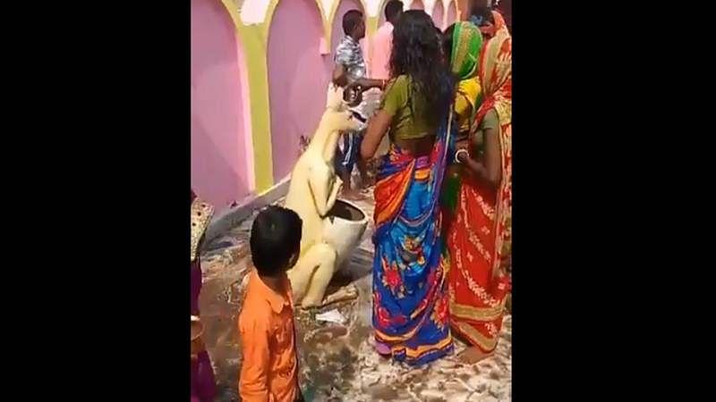 Bizarre video: Women offer prayers to 'holy dustbin', social media goes berserk