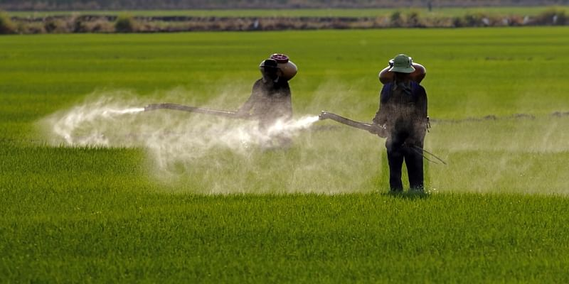 Abysmal standards in pesticide use
