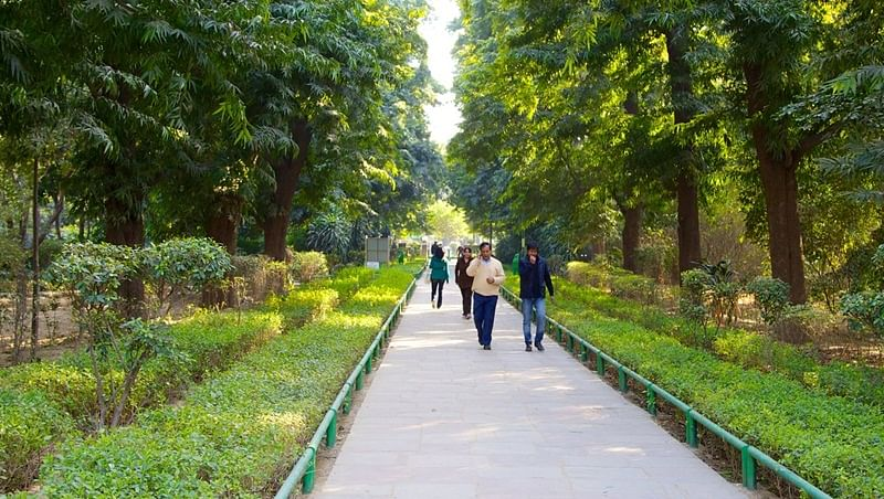 Discovering the green side of New Delhi