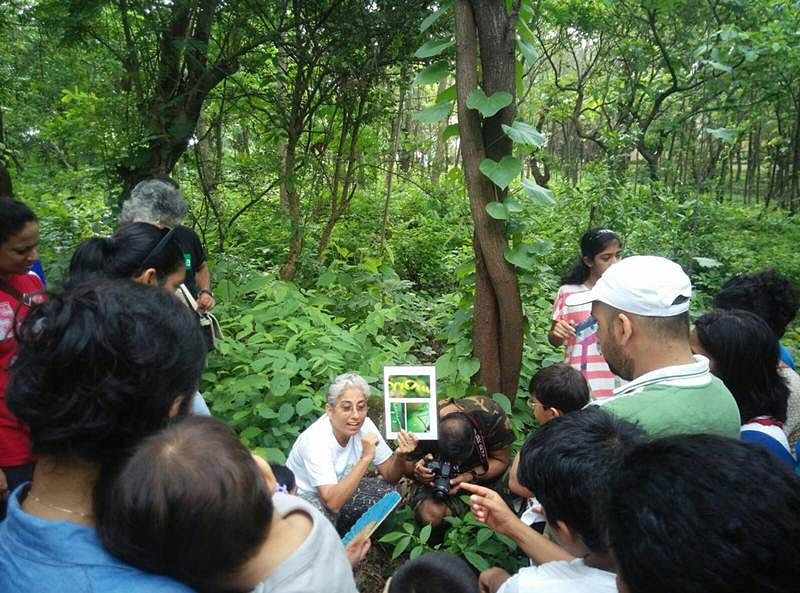Reene Vyas engages the participants in some tree talk