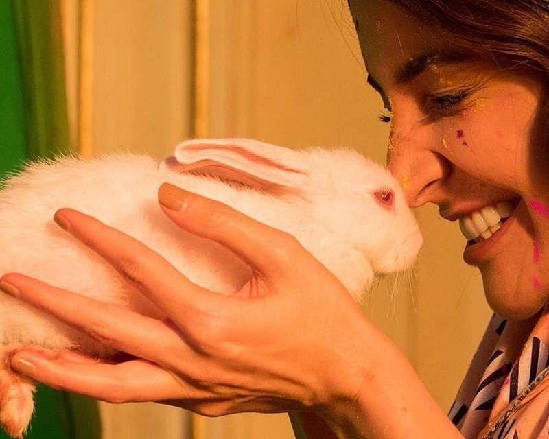 Wow! New bride Anushka Sharma crowned PETA's 'Person of the Year'