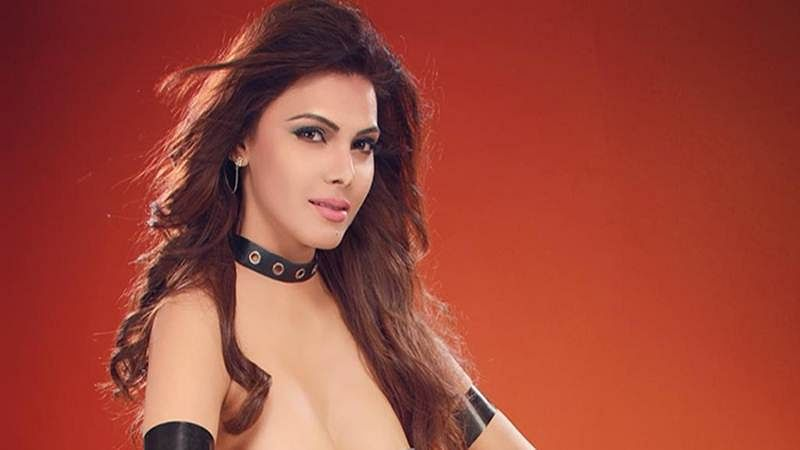 Hotness Alert! Sherlyn Chopra poses nude and hints at 'breaking the internet'