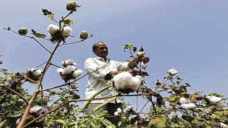 Nashik: Farmers meet to decide on future strategy regarding farming issues