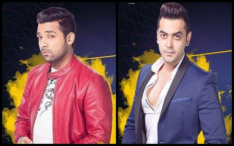 Bigg Boss 11: Puneesh Sharma and Luv Tyagi win tickets to finale week but this thing happened; Day 95 drama