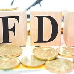 FDI flows to India grew 6% in 2018 to USD 42 bn: UN report