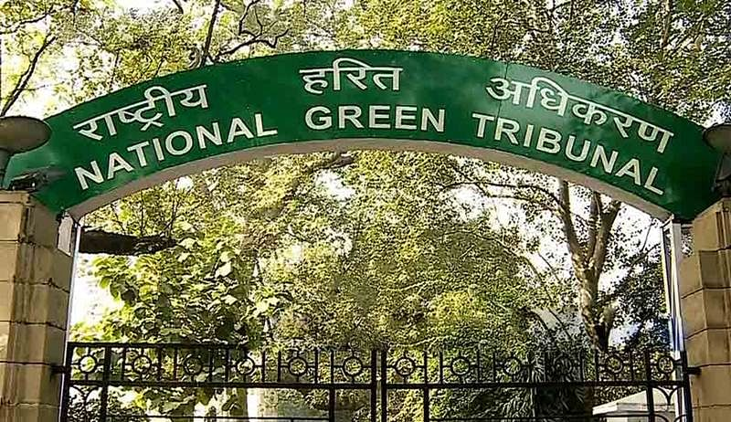 NGT directs Delhi and Haryana governments to identify and address sources of pollution in Yamuna