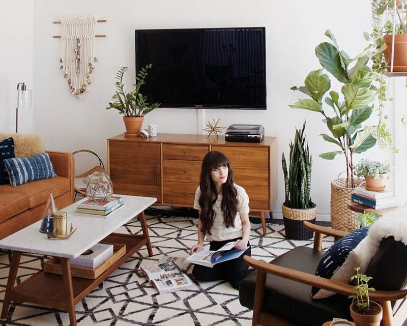 Decorating with plants: Easy ways to rid your abode of pollution