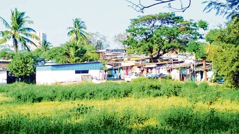 As developers & activists Fight, Aarey tribals suffer silently
