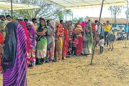 Mungaoli, Kolaras by-polls peaceful, turnout 75%