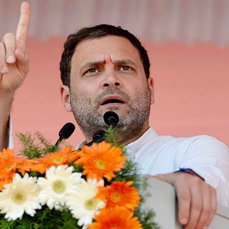 With Rahul out, his appointees get the boot