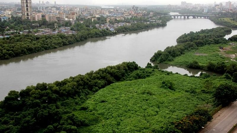 Mumbai: Metro authorities destroy mangroves at Juhu for construction of yard for Metro-2B line