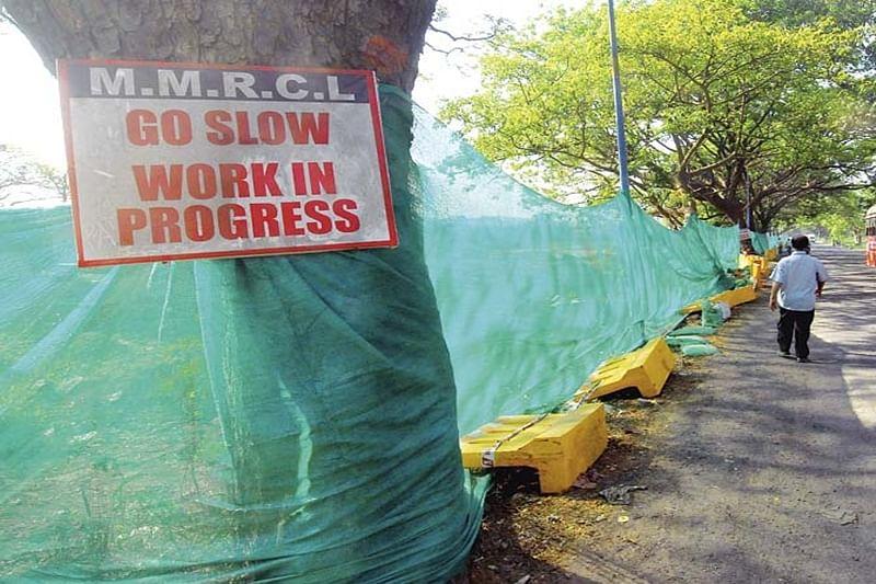 Mumbai : 7 tree-cutting proposals missing from BMC portal