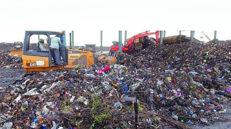 Sluggish response of TMC on solid waste management irks Bombay High Court