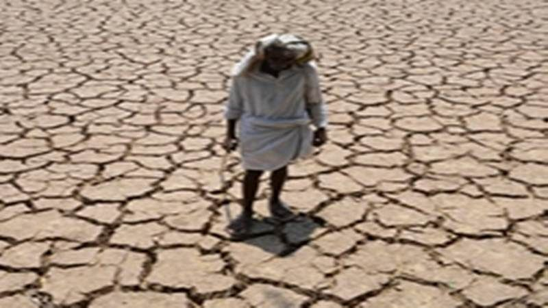 Nine Kerala districts to be declared drought-hit says Government