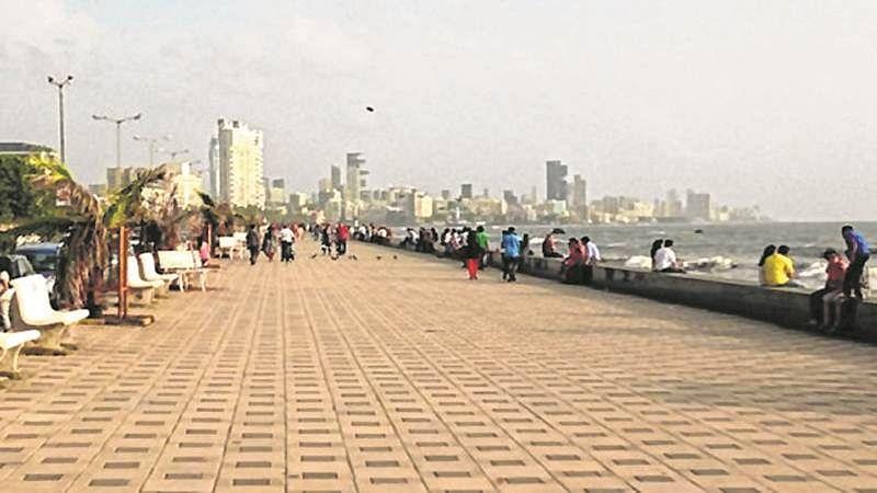 Mumbai: Worli promenade to be beautified with new palm trees