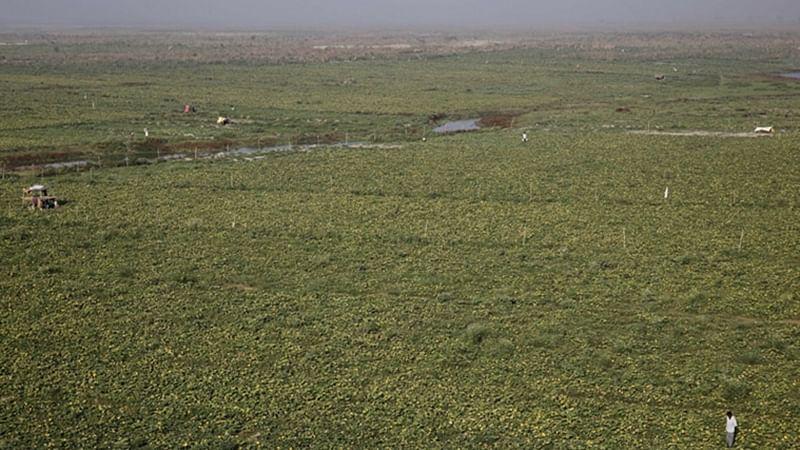 Maharashtra: Land buyers in Nanar belong to trading community; names of farmers are Modi, Shah, Jain
