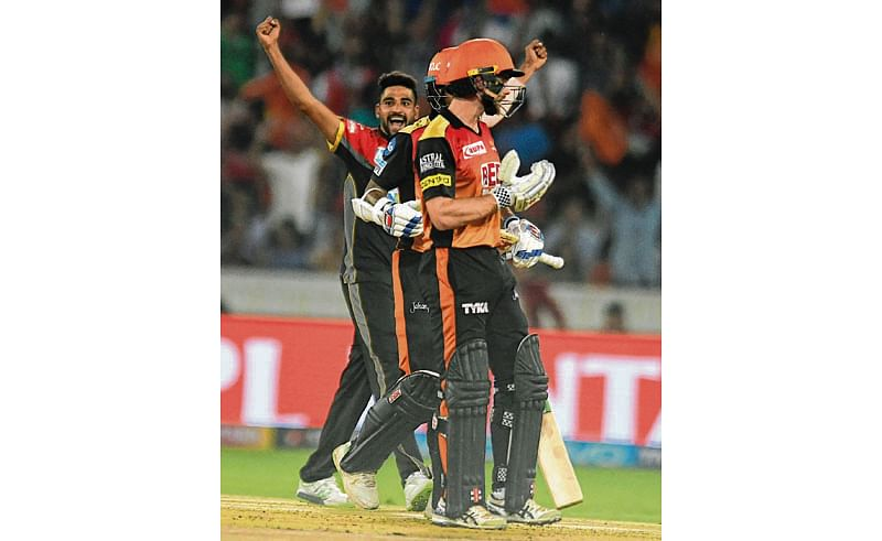 RCB down, but not out
