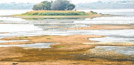 Dry days ahead: Old Bhopal, Bairagarh, BHEL stare at acute water shortage