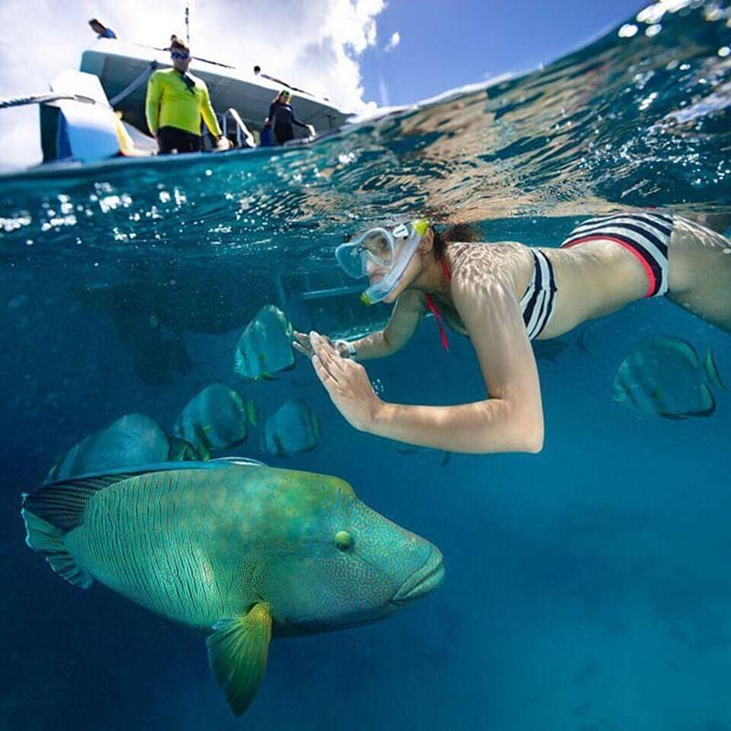 HOTNESS IN WATER! Parineeti Chopra goes snorkeling in the ocean [See Pics]