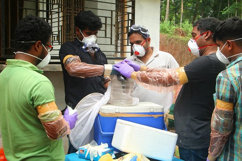 No Nipah virus case in northeast: Official