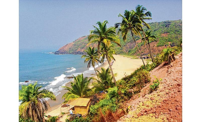 Goa beaches set up 'no selfie' zones