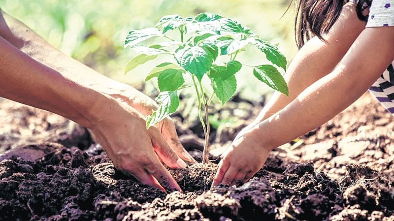 World Environment Day 2018: Why it is time to Go Green again