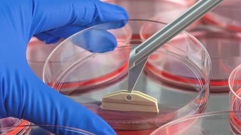 Stem cell therapy effective against smoke induced COPD