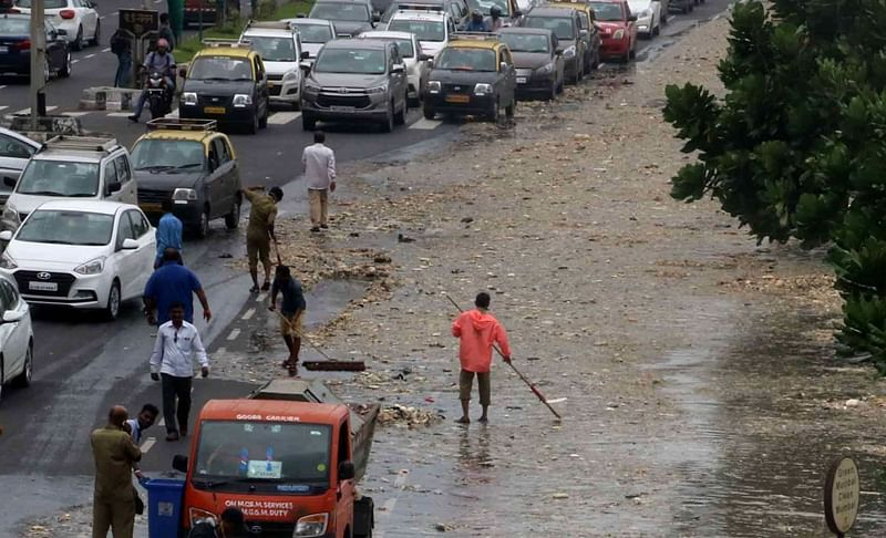 Mumbai: Owing to high-tide, 9 metric tonnes of waste washes onto Marine Drive