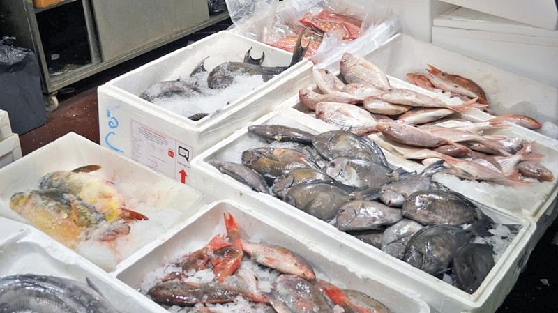 Goa bans sale of fish, import of Chicken