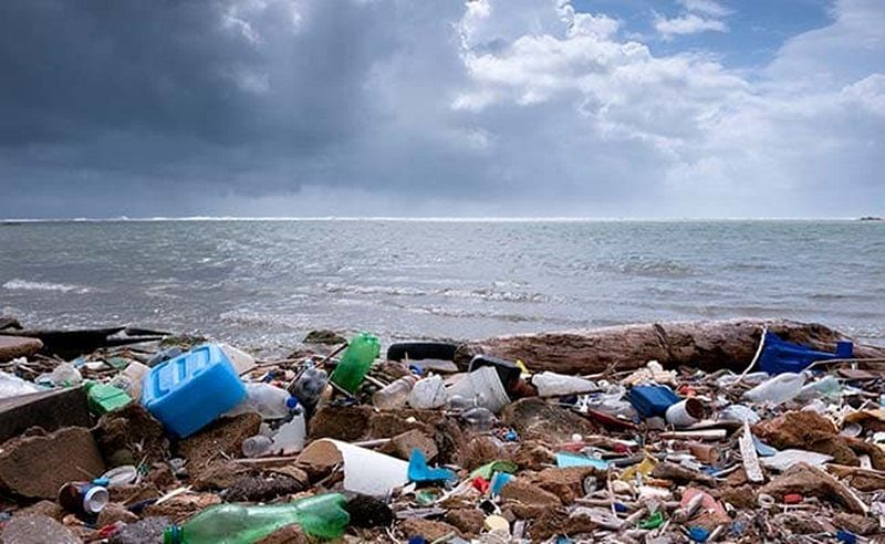 Goa government considering to ban plastic on beaches says Urban Development Minister Francis D'Souza